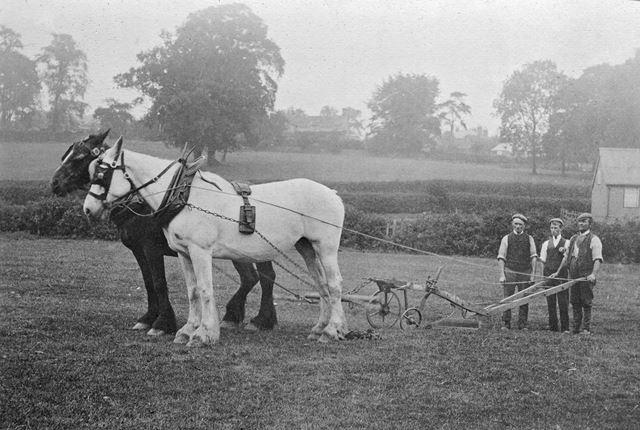Ploughing at Duffield