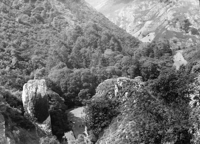 Hurts Wood and Ilam Rock, Dovedale
