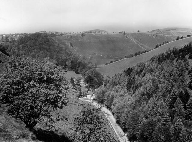 The Pinch Road and Lode Mill Plantation, Dovedale