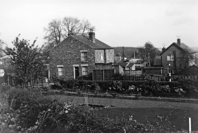 Houses and Gardens at Bottom of Steam Mill Lane, Ripley, c 1960s