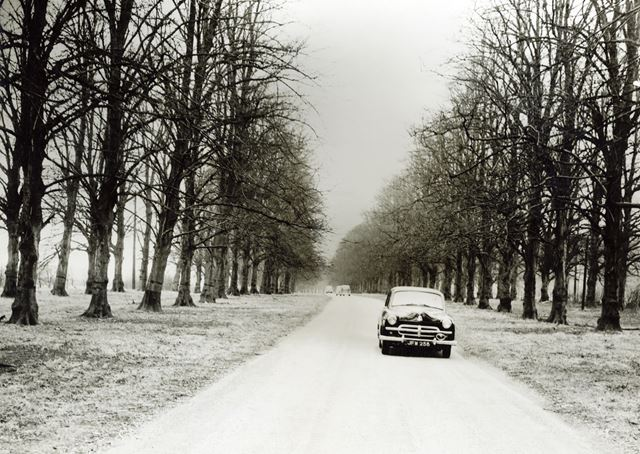 Reopening of Lime Tree Avenue, Clumber Park, 1955