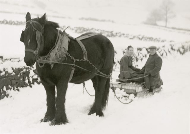 Delivering the Milk on the Lane, Raven House, , Milltown